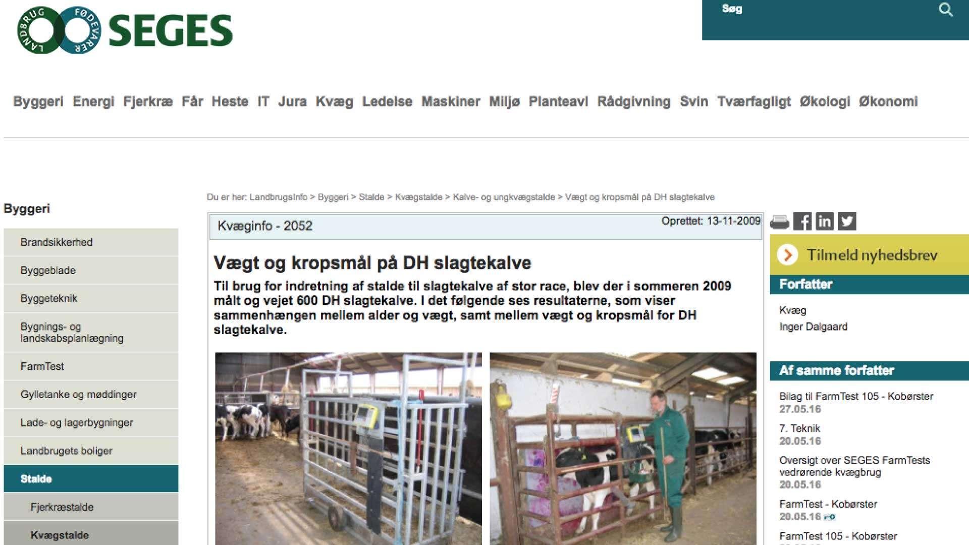Landbrugsavisen | Vægt på Dansk Holstein slagtekalve